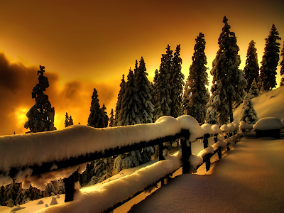 Evening Light and Snow wallpaper