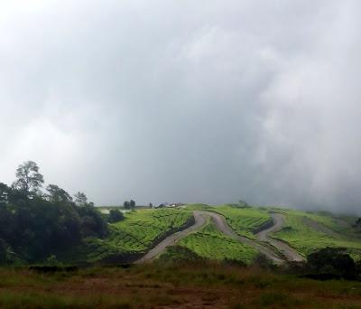 Negeri diatas awan