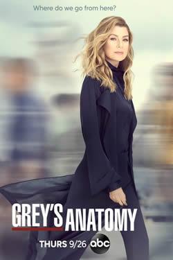 Capa Décima Sexta Temporada de Grey's Anatomy