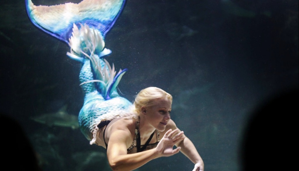 Mermaids Amazing Underwater Acrobatics