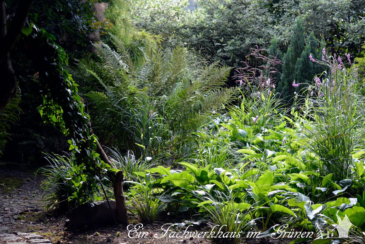 Man Hört Nie Auf Den Eigenen Garten Zu Gestalten. Manche Veränderungen Sind  Notwendig, Und Manches Nehmen Wir Uns Vor, Weil Einfach Die Zeit Für Etwas  Neues ...