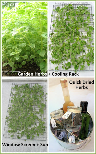 Drying Herbs with the Sun. Simply cut, lay out on one layer, cover with a screen and put out until dry. via tamdoll.com