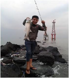 Nama Nama Ikan Laut Dangkal-IKAN KURO