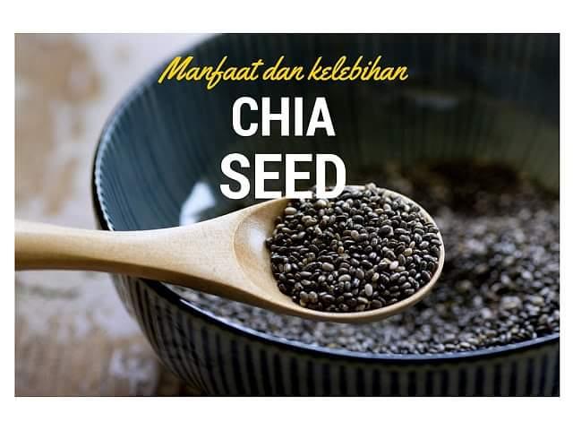 10 Manfaat Chia Seed Bagi Kesehatan – Kulit – Ibu hamil – Diabetes