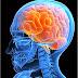 Brain Health: Foods to Boost Brain Power