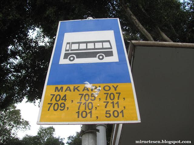Кипр на практике: автобусы и их расписание