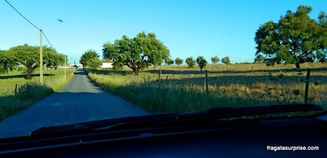 Estrada no Alentejo, Portugal