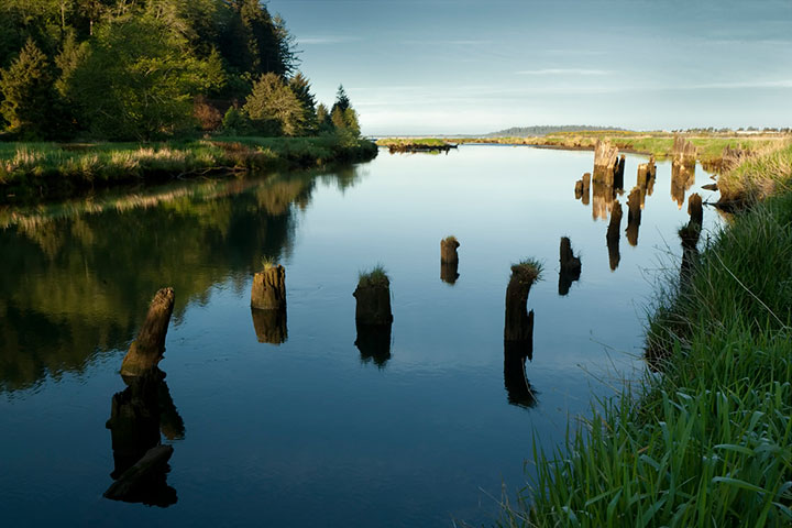 Kilchis Estuary, Oregon