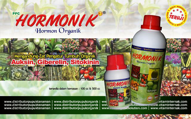 HORMONIK mengandung Zat Pengatur Tumbuh (ZPT) Organik terutama Auksin, Giberelin dan Sitokinin, di formulasikan dari bahan alami yang dibutuhkan oleh semua jenis tanaman. HORMONIK tidak membahayakan (aman) bagi kesehatan manusia maupun binatang. Hormon yang terkandung dalam HORMONIK adalah senyawa alami yang mengatur pertumbuhan tanaman terdiri dari auksin, giberelin dan sitokinin.