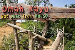 Keindahan Omah Kayu (Rumah di Pohon) Batu Malang