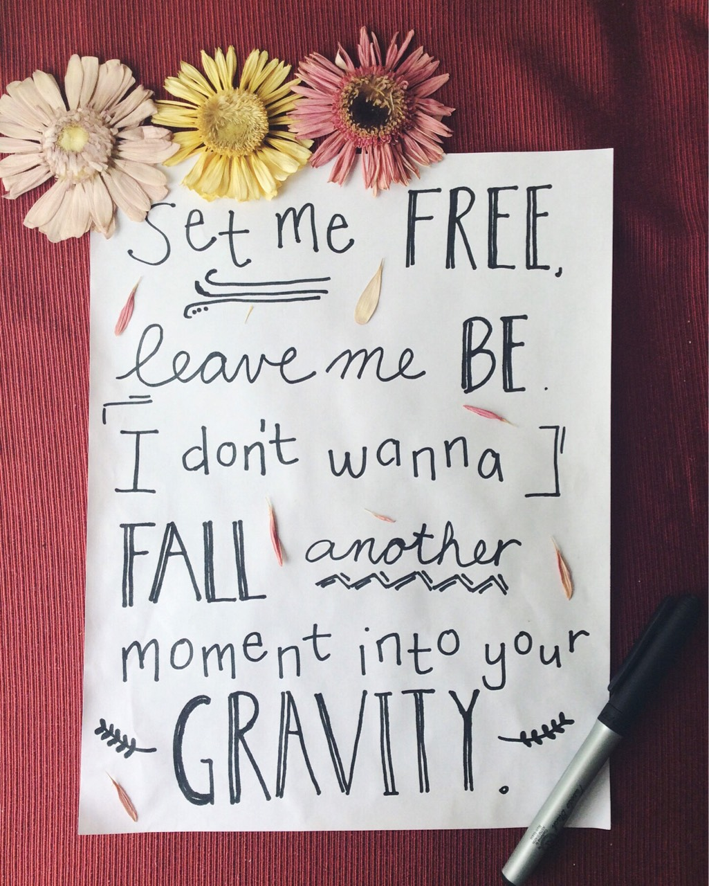 gravity sara bareilles lyrics