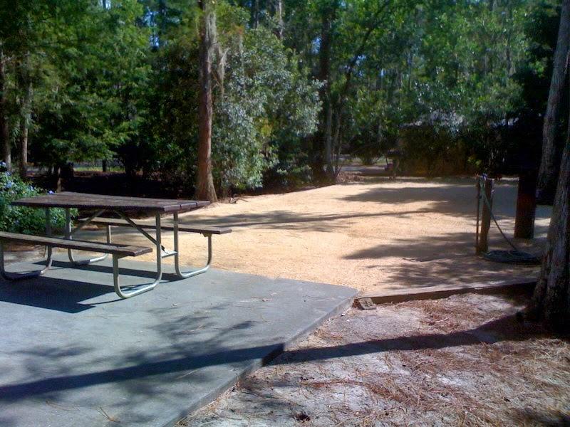 Wish Upon a Star with Jennifer: Campsites at Fort Wilderness