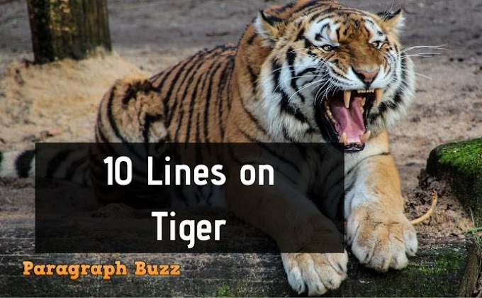 10 Lines on Tiger in English