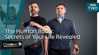 The Human Body: Secrets of Your Life Revealed Watch online Documentary Series