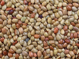 List of PULSES AND LEGUMES in Indian Languages - Desi Mejwani