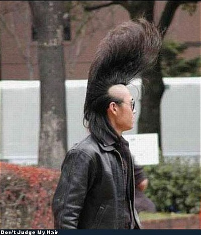 excitement net funny hairstyles