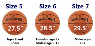 3 Macam Ukuran Bola Basket Yang Harus Anda Tahu by zonapelatih