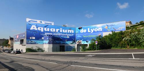 l aquarium de lyon visiter lyon d 233 couverte de la ville des lumi 232 res