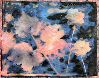 Wet cyanotype -Sue Reno_Image 506