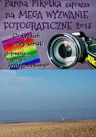 http://misiowyzakatek.blogspot.com/2013/12/niebieski-wyzwanie-foto.html