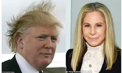 Barbra Streisand comes for Donald Trump and it's epic