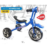 wimcycle hotwheels tricycle