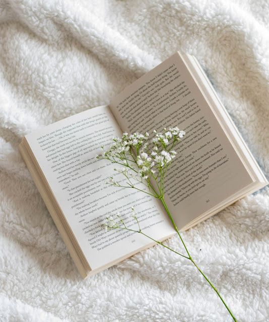Open book on fleece blanket with white gypsophila stem