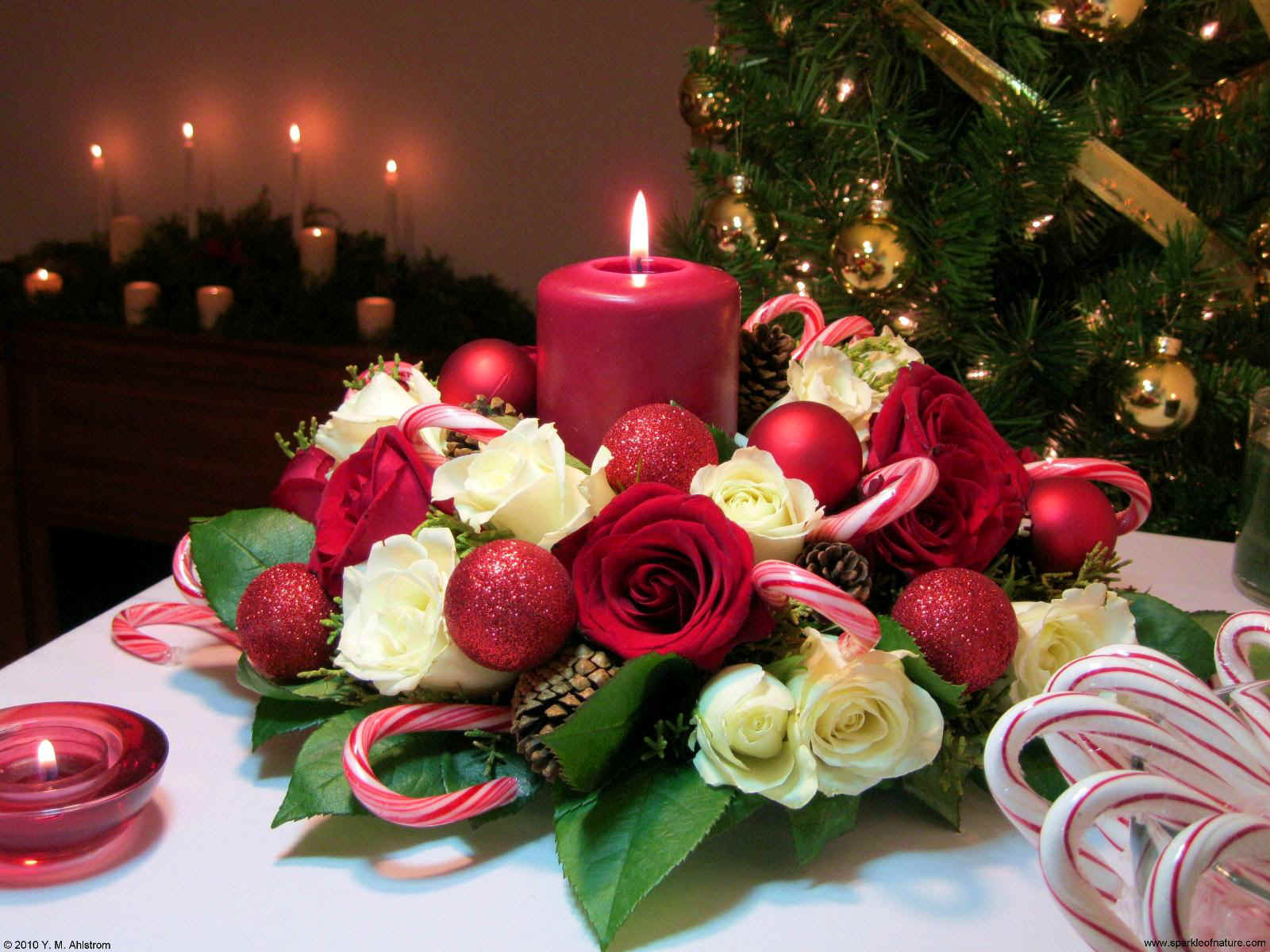 Free Games Wallpapers: Christmas Candle Wallpapers