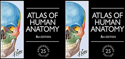 NETTERS ATLAS OF HUMAN ANATOMY PDF For FREE Download Undoubtedly The Best Human Anatomy
