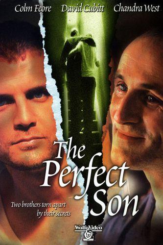 CARTEL: El Hijo Perfecto - The Perfect Son - PELICULA - 2000