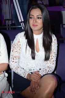 Actress Catherine Tresa Pictures at Sarrainodu Success Meet  0053