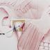 Ressonância magnética na disfunção da ATM
