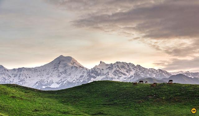 Dayara Bugyal Trek, Uttarakhand