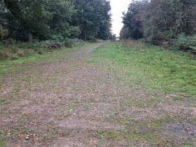 Hindhead Commons A3