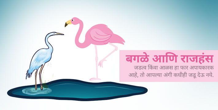 बगळे आणि राजहंस - इसापनीती कथा | Bagale Aani Rajahans - Isapniti Katha
