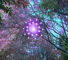 Juegos de Escape - Magical Gem Forest Escape