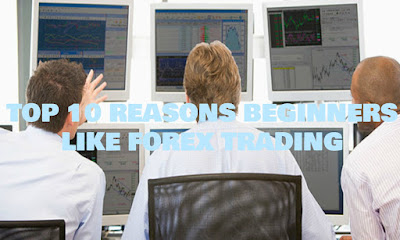 Top 10 Reasons Beginners Like Forex Trading, Top, 10, Reasons, Beginners, Like, Forex, Trading, Tips, Growth, Portfolio, Blog, Truth