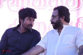 Tamil Film Industry Jallikattu Support Protest of Jallikattu  0065.jpg