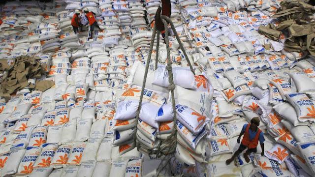 Alasan Menko Darmin Tetap Impor Beras Meski Surplus 2,85 Juta Ton