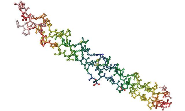 Holoproteinas y biologia