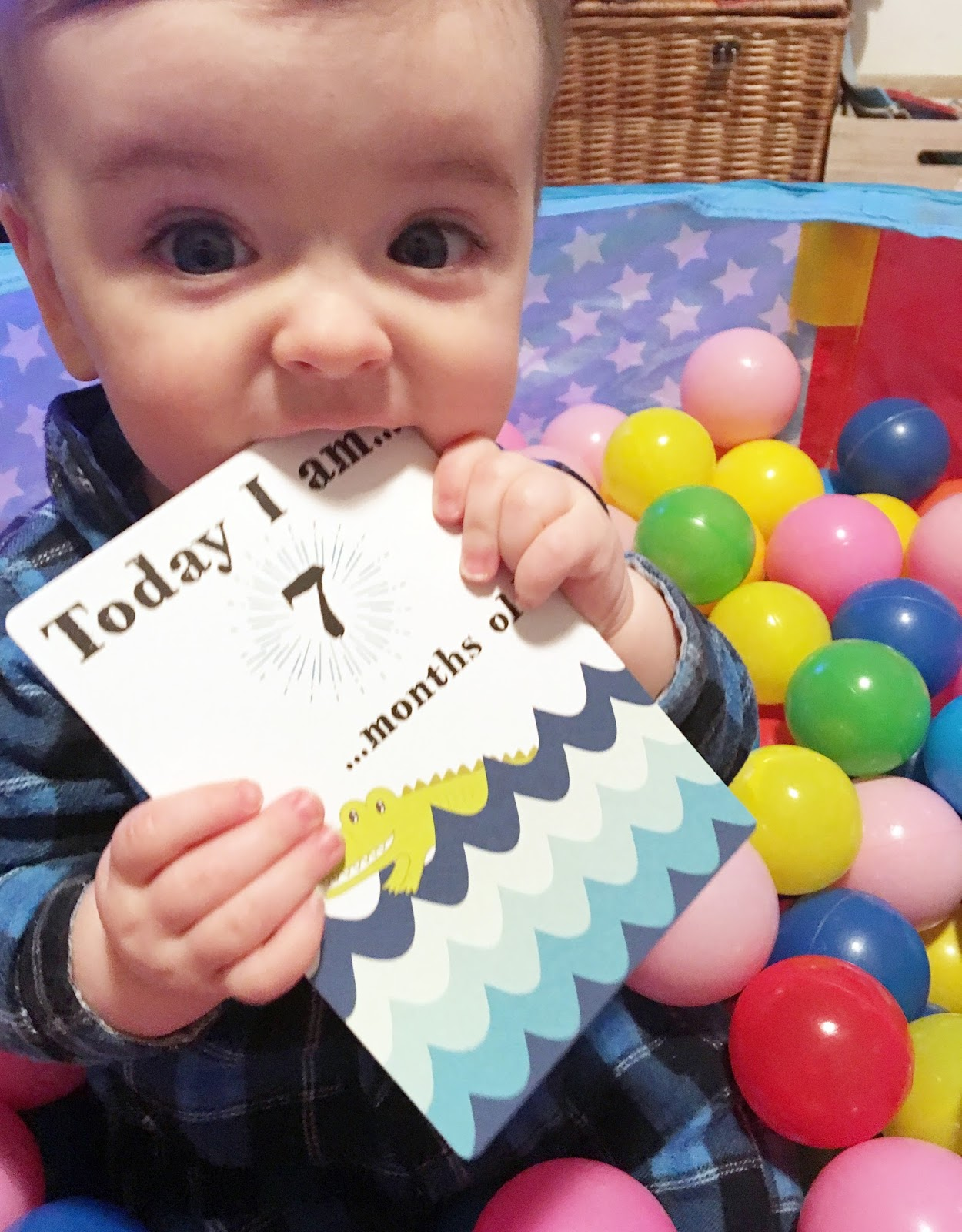 Baby seven month update -6