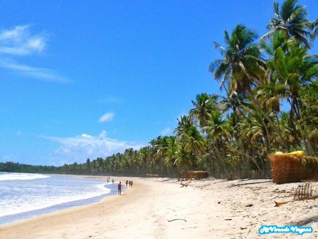 o que fazer na ilha de Boipeba, na Bahia