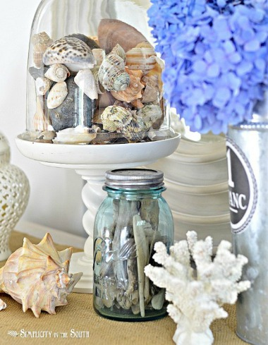 Glass Cloche with Shells
