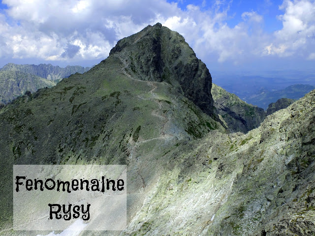 http://www.rudazwyboru.pl/2014/07/fenomenalne-rysy.html
