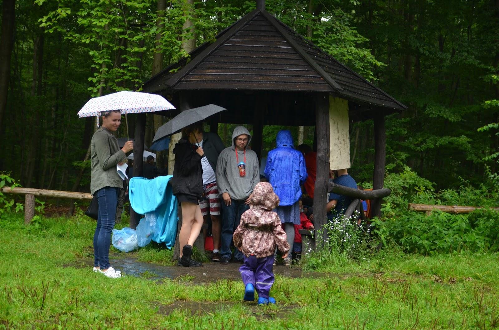 Pierwsze Leśne przedszkole w Trójmieście