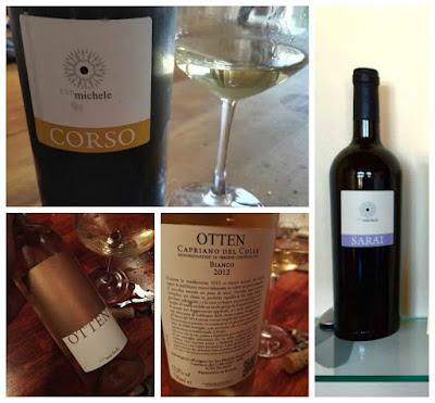 wine blogger campioni