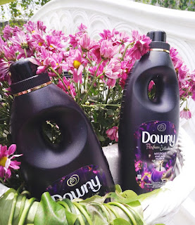 Downy Parfum Collection