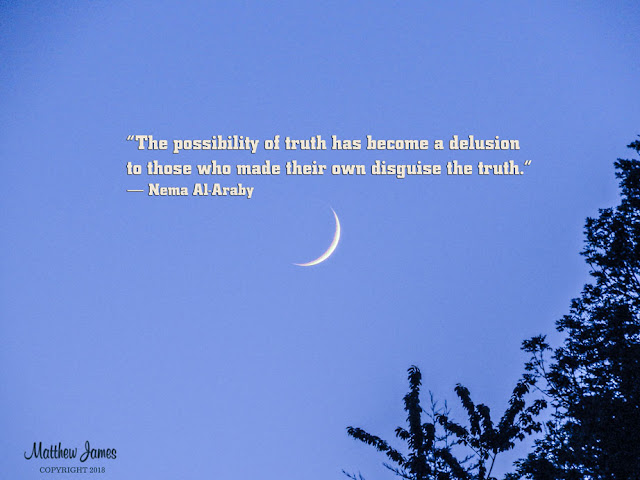 """The possibility of truth has become a delusion to those who made their own disguise the truth"" - Nema Al-Araby"