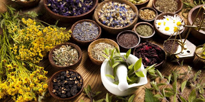 Obat Eksim Herbal Paling Ampuh Manjur
