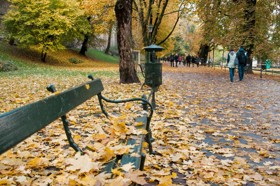 jesienny Kraków | złoty Kraków | planty | jesień w Krakowie